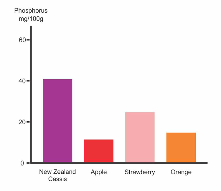 Phosphorus Content